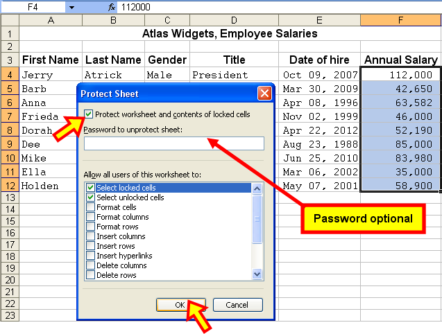 how to put a checkmark in excel 2013